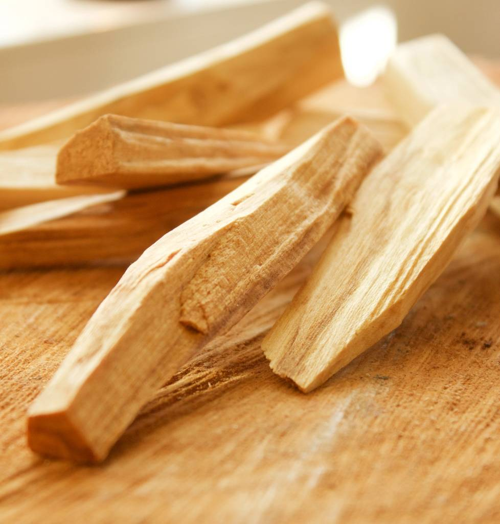 Palo Santo Wood Chips