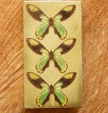 Butterfly Matches