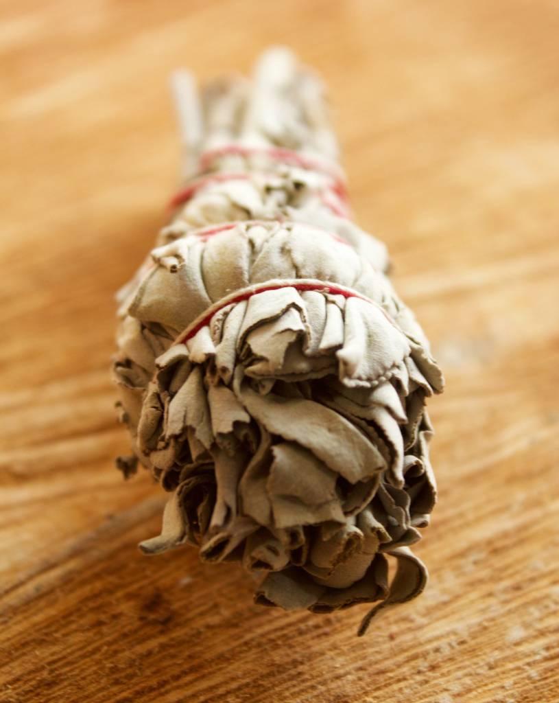 Sage Bundle Small