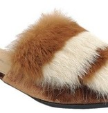 Shoe Shoe Train Lemay