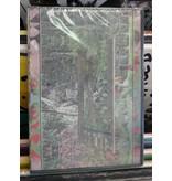 Akuna Matada (IL) - DVD (by Danny Micik)