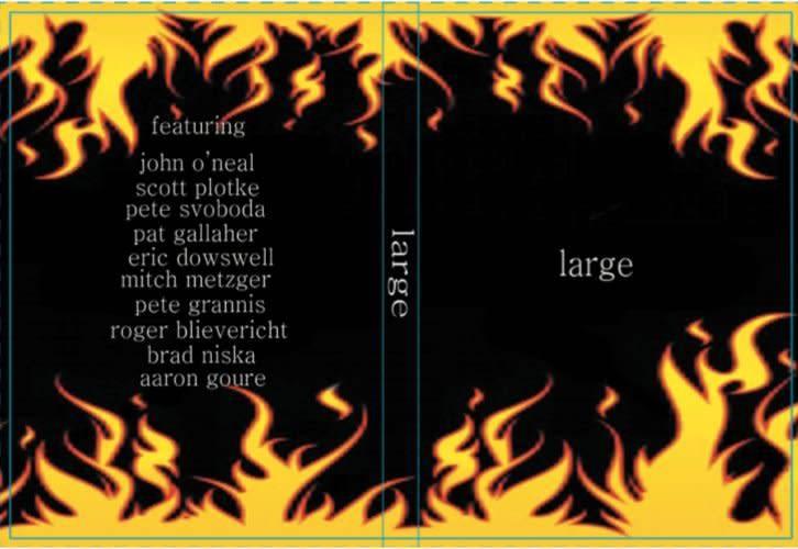 Large - DVD (by Scott Plotke)