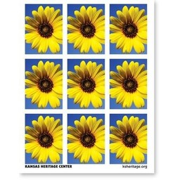 Sunflower Stickers, pkg of 27