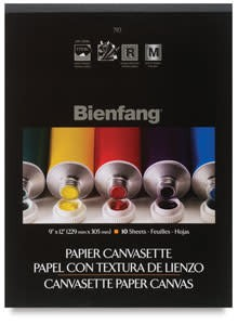 BIENFANG PAPER CANVAS, 9X12, 10 SHEETS