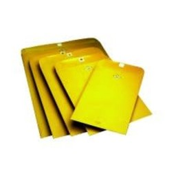 Clasp Envelopes, 6 in x 9 in, 100ct