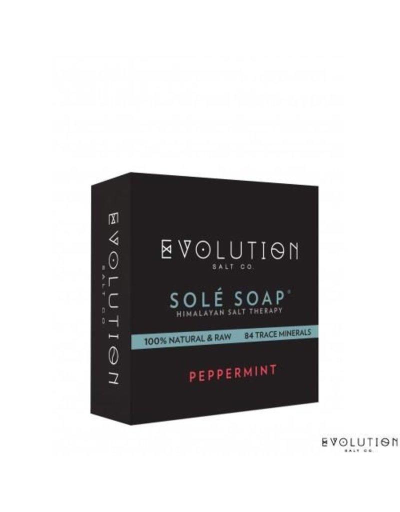 Evolution Salt Co. Sole Bath Soap Bar 4.5 oz.