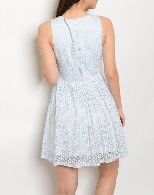 Shoptiques Web Lace Overlay Dress
