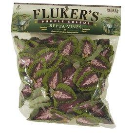 Flukers Flukers Purple Coleus Vine 6ft