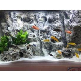Jungle Bob Enterprises Inc. 8260 Jungle Bob Background 48x21 inch For Aquarium 55/75 Gallon Limestone