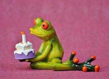 Reptile Birthday Parties