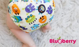 Buy USA - Blueberry Diapers