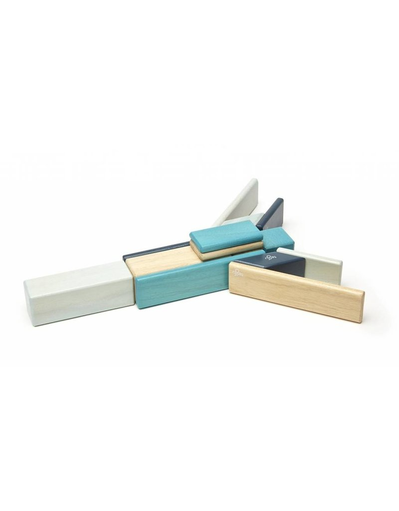 Tegu Tegu Wooden Blocks