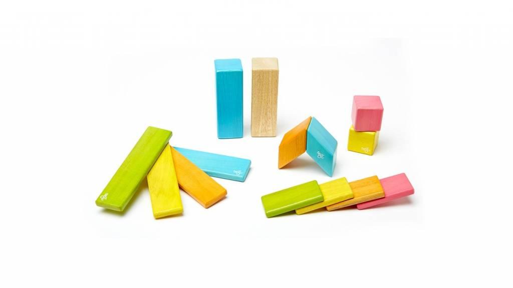 Tegu Tegu Wooden Blocks