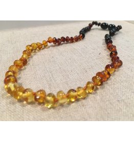 BE Amber Necklace - Screw Rainbow Light Front Polished 10-11 inch