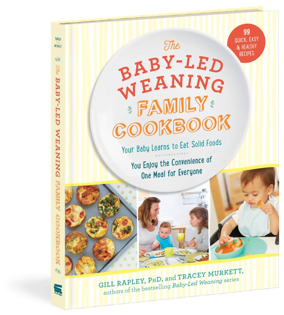 workman publishing baby led weaning family cookbook nappy shoppe