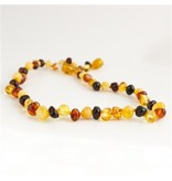 Amber Monkey Necklace Polished Baroque Multi 10-11 Inch