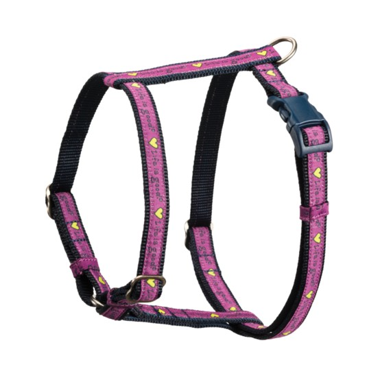 Life is Good Life is Good Nylon Harness Heart