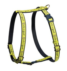 Life is Good Rocket Nylon Dog Harness, Neon Green