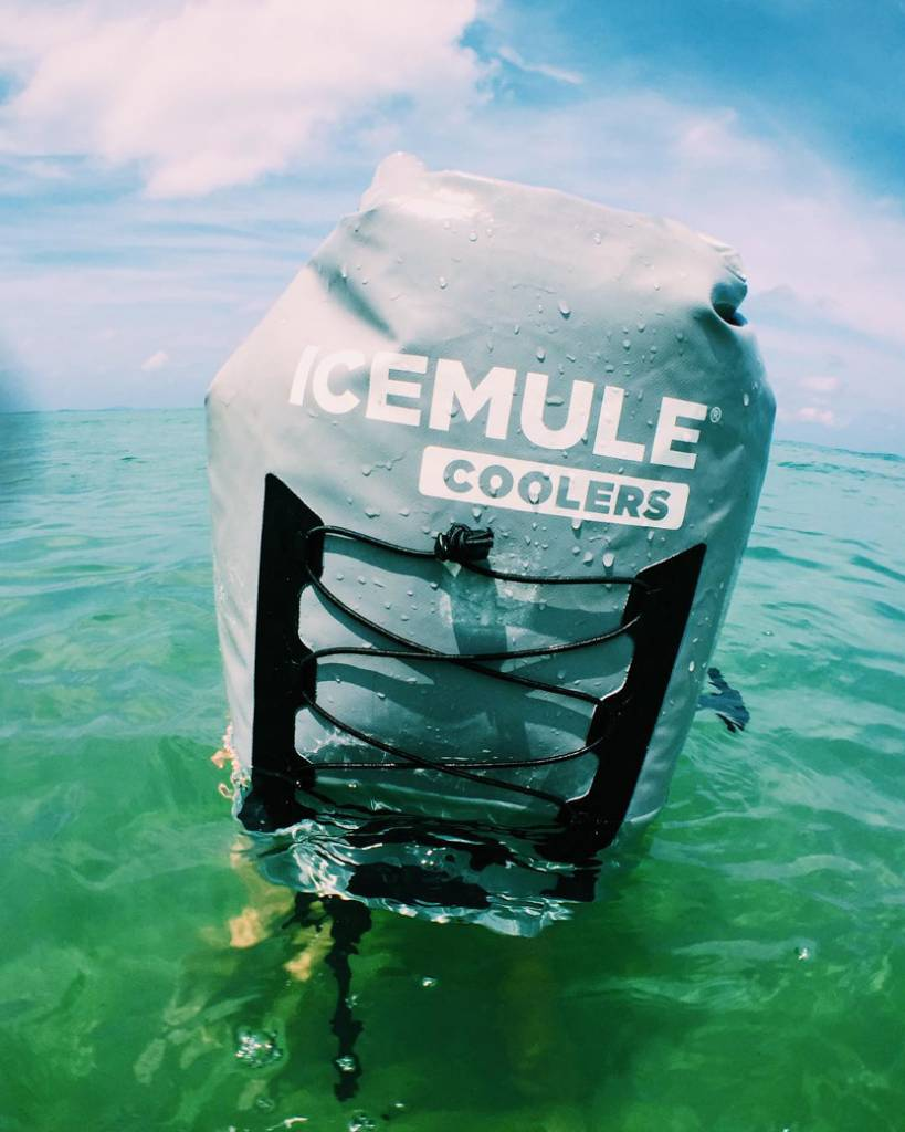 IceMule Medium Classic Cooler, Seafoam