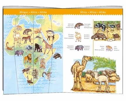 Djeco Djeco Puzzle Animal Observation 100pcs