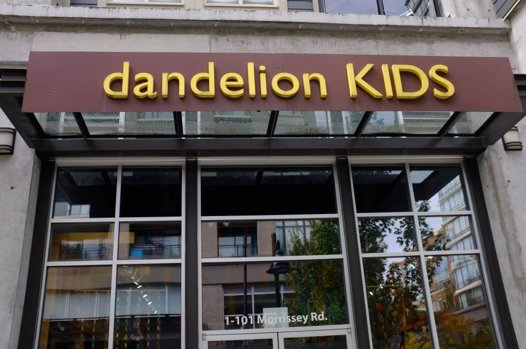Who's Behind Dandelion Kids (Feb 2017)