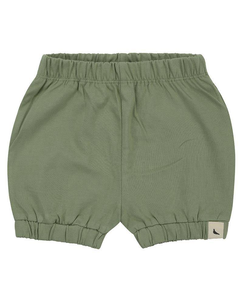 Turtledove London Turtledove Bloomer Shorts