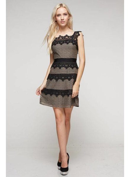 Ina Lace Detailed Skater Dress