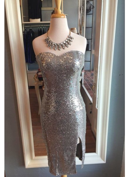 Strapless Sequin Dress in Silver