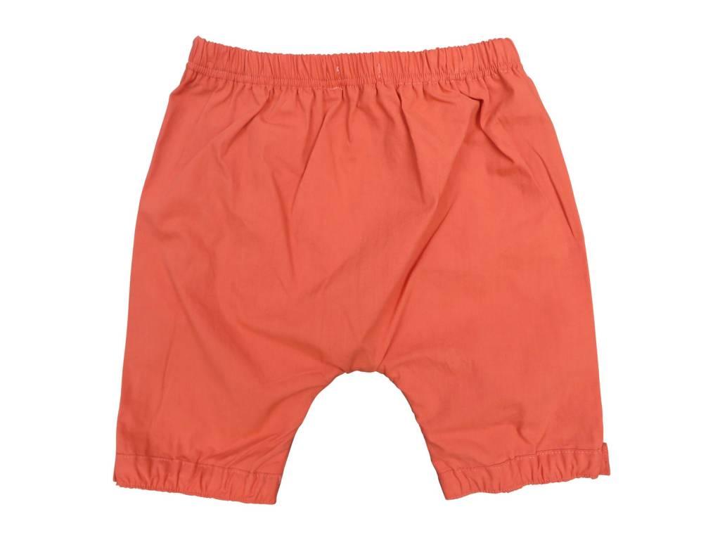 Charm Baby Shorts orange