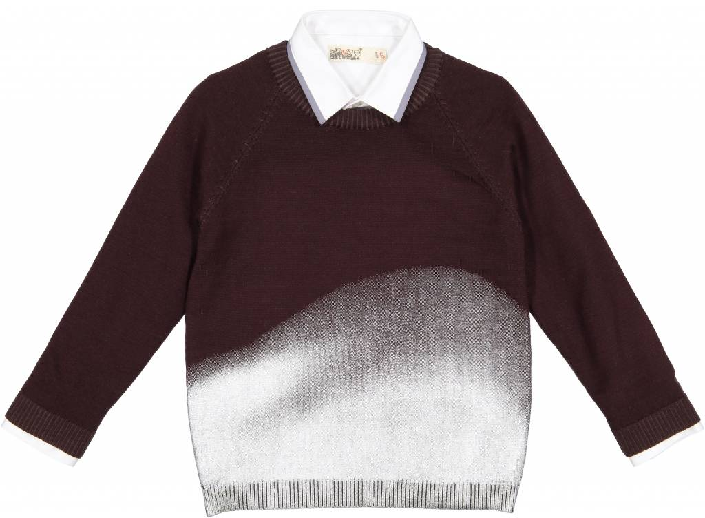 Nove Crew Neck with Metallic Spray Plum
