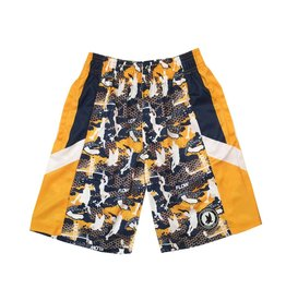 Flow Society Golden State Shorts