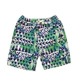 Coral Reef Cape Town Board Shorts