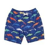 Coral Reef Dolphin Board Shorts