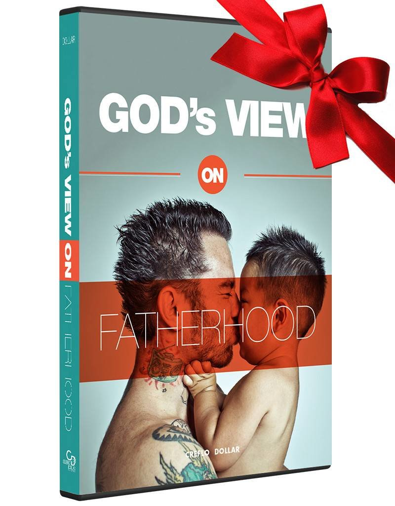 God's View of Fatherhood  2 CD Series