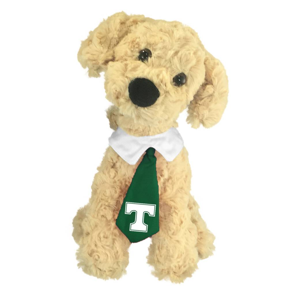 Mascot Factory Trinity Golden Retriver Dog