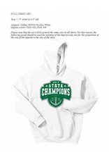 Digital Promotions Final Sale Youth State 2017 Champ Hoodie