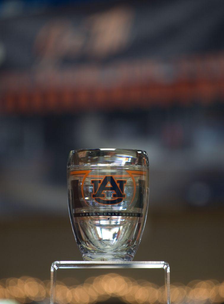 Tervis Tervis Auburn Reserve Stemless Wine Glass
