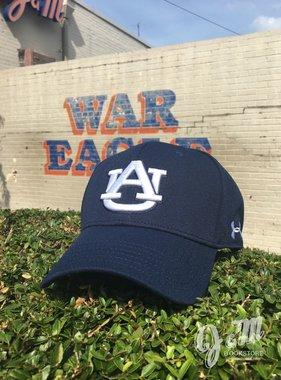 Under Armour Under Armour OSFA Baseball Hat