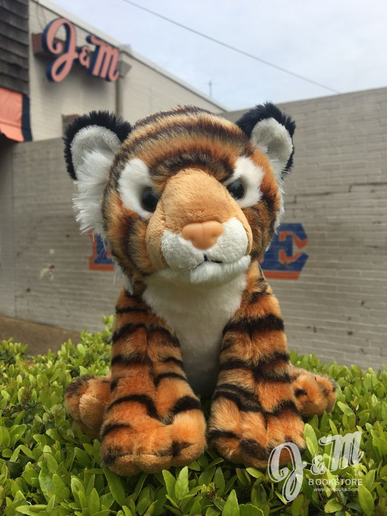 bengal tiger - j&m bookstore