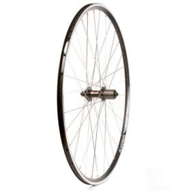 WHEEL SHOP Rear 700C Wheel, 32H Black Alloy Double Wall Alex DA-22/ Black Nvatec 212R QR 8-11spd Hub, Stainless Spokes, Wheel Shop,