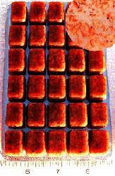 Dr. G's Marine Aquaculture Dr. G's Brine Shrimp Gut Loaded Frozen Cubes 3.5 oz