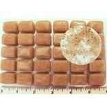 Dr. G's Marine Aquaculture Dr. G's Mysis Shrimp Gut Loaded Frozen Cubes 3.5 oz