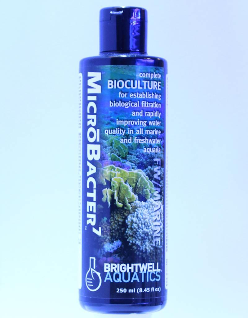 BrightWell Aquatics Brightwell Aquatics MicroBacter