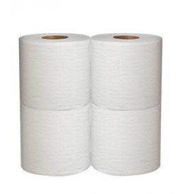 HEAVENLY SOFT Toilet Tissue, Heavenly Soft Toilet Tissue 24/4ct. Case