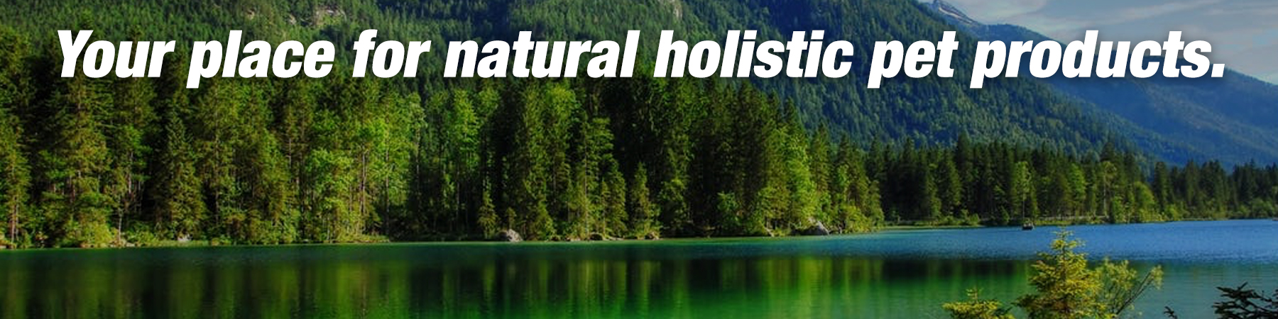Natural Holistic Banner