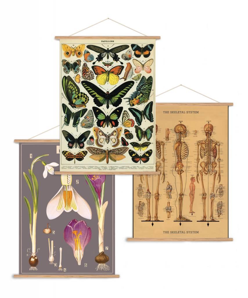 Cavallini Papers Vertical Vintage Poster Kit