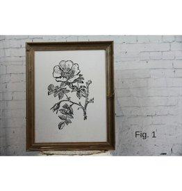 Typo Botanical Prints 11x14, 11 Styles