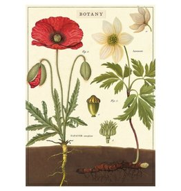 Cavallini Papers Botany Wrap Sheet