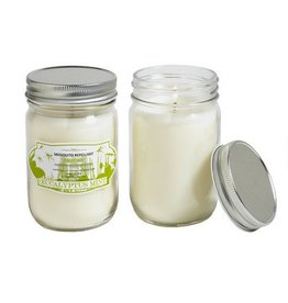 Hill House Natural Eucalyptus Mint Mosquito Repel Candle