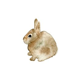 Typo Brown Hare